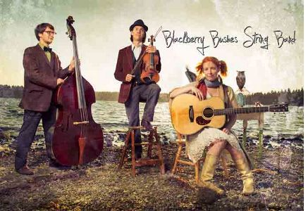 Blackberry Bushes String Band